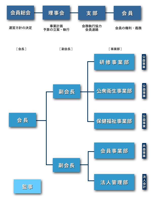 organization_chart_02